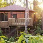 Disney's Treehouse Villas at Disney's Saratoga Springs Resort & Spa
